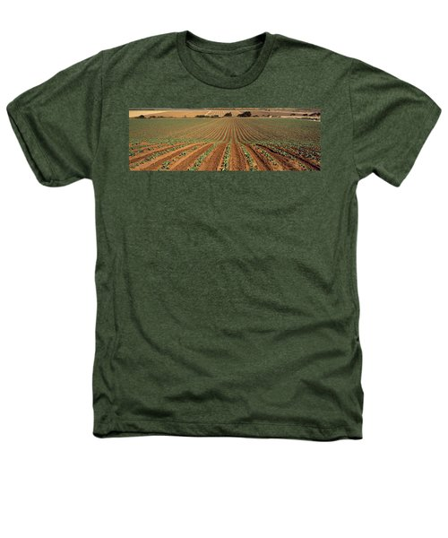 Agriculture - Sloping Field Of Early Heathers T-Shirt by Timothy Hearsum