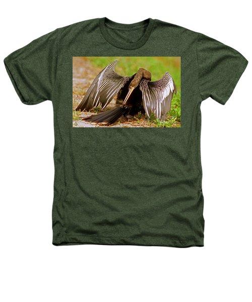 Anhinga Anhinga Anhinga Preening Heathers T-Shirt by Millard H. Sharp