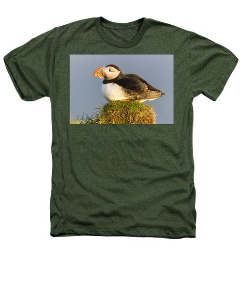 Atlantic Puffin Iceland Heathers T-Shirt by Peer von Wahl