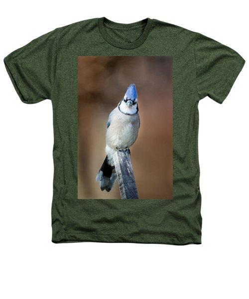 Backyard Birds Blue Jay Heathers T-Shirt by Bill Wakeley