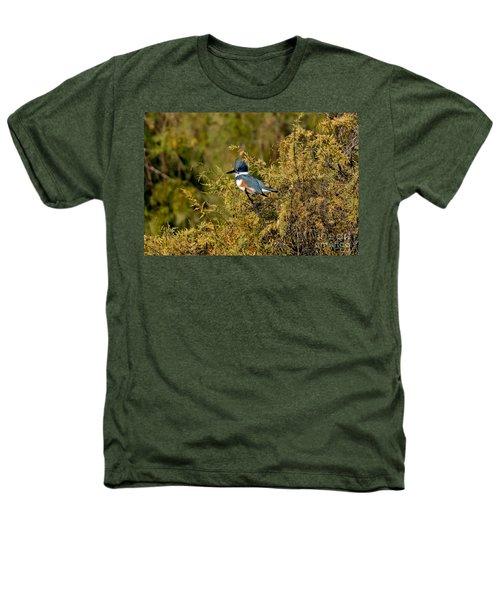 Belted Kingfisher Female Heathers T-Shirt by Anthony Mercieca