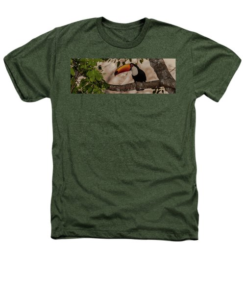Close-up Of Tocu Toucan Ramphastos Toco Heathers T-Shirt by Panoramic Images