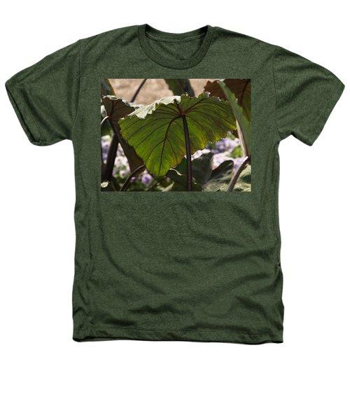 Elephant Ear Heathers T-Shirt by James Peterson
