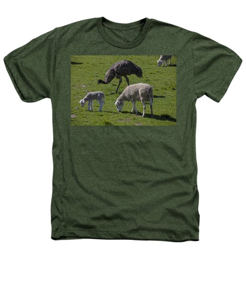 Emu And Sheep Heathers T-Shirt by Garry Gay