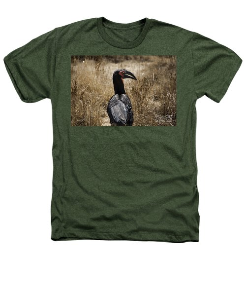 Ground Hornbill-africa Heathers T-Shirt by Douglas Barnard