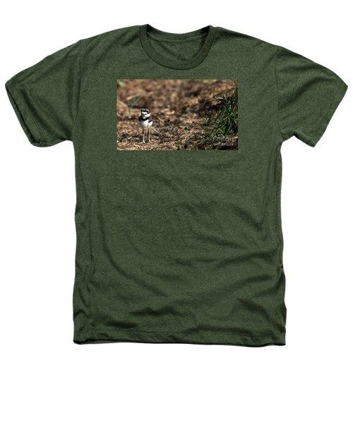 Killdeer Chick Heathers T-Shirt by Skip Willits
