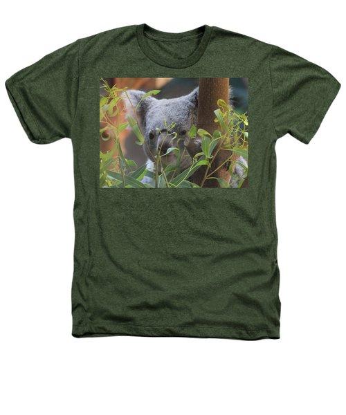 Koala Bear  Heathers T-Shirt by Dan Sproul
