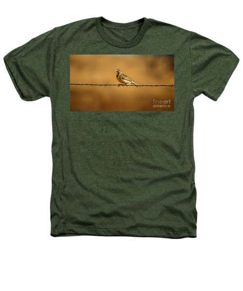 Meadowlark And Barbed Wire Heathers T-Shirt by Robert Frederick