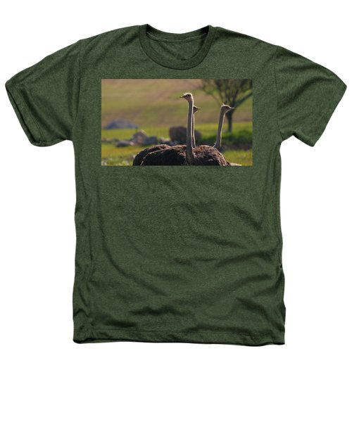 Ostriches Heathers T-Shirt by Dan Sproul