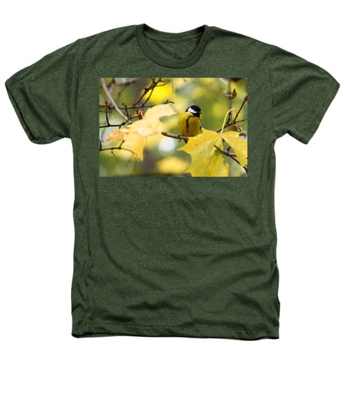 Sensibly Dressed - Featured 3 Heathers T-Shirt by Alexander Senin