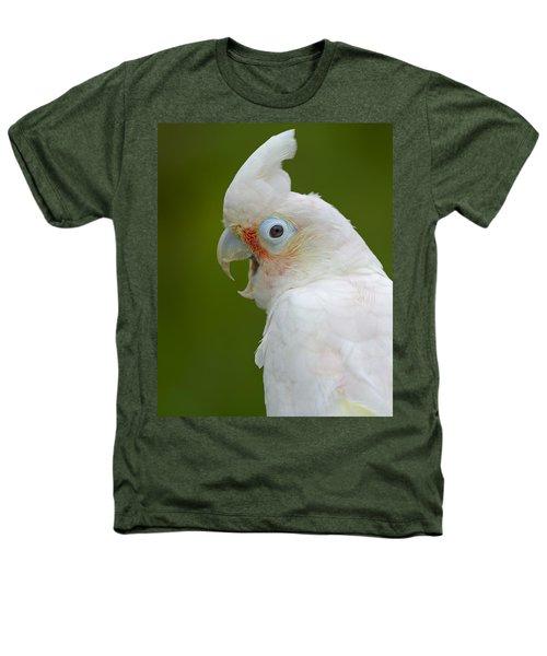 Tanimbar Correla Heathers T-Shirt by Tony Beck