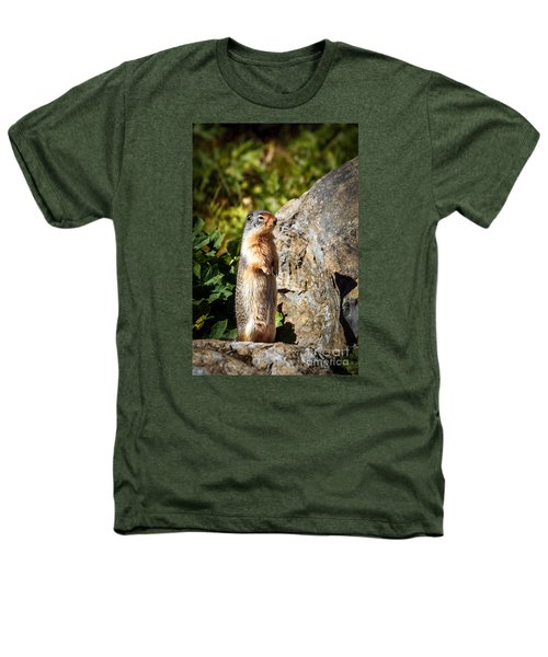 The Marmot Heathers T-Shirt by Robert Bales