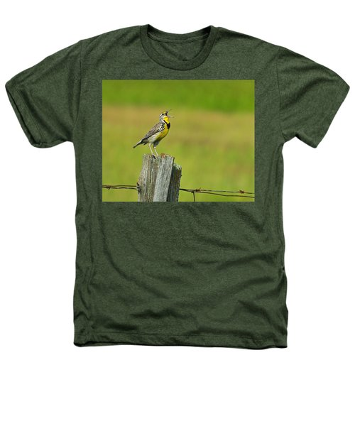 Western Meadowlark Heathers T-Shirt by Tony Beck
