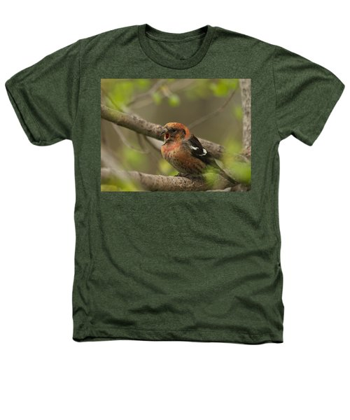 White-winged Crossbill Heathers T-Shirt by James Peterson