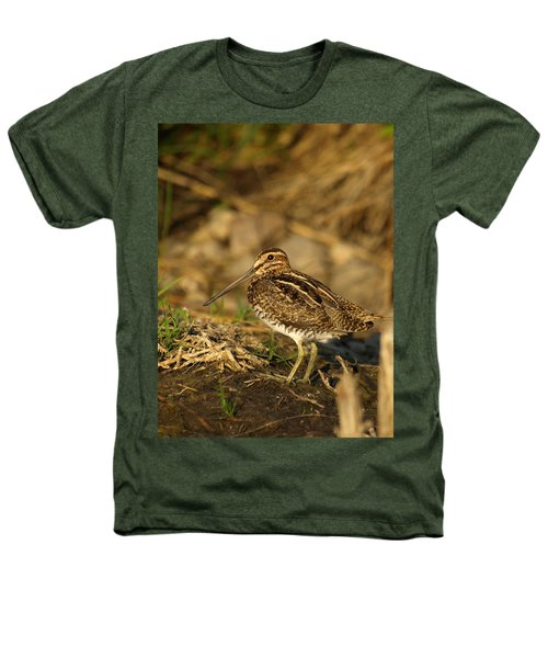 Wilson's Snipe Heathers T-Shirt by James Peterson