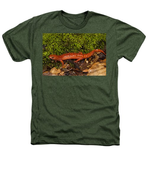 Red Salamander Pseudotriton Ruber Heathers T-Shirt by Pete Oxford