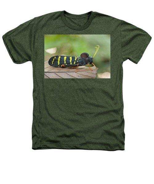 Lubber Grasshopper Guyana Heathers T-Shirt by Piotr Naskrecki