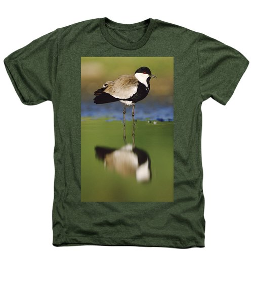 Spur Winged Plover With Its Reflection Heathers T-Shirt by Tim Fitzharris