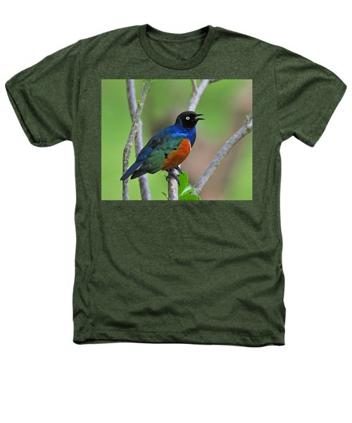 Superb Starling Heathers T-Shirt by Tony Beck