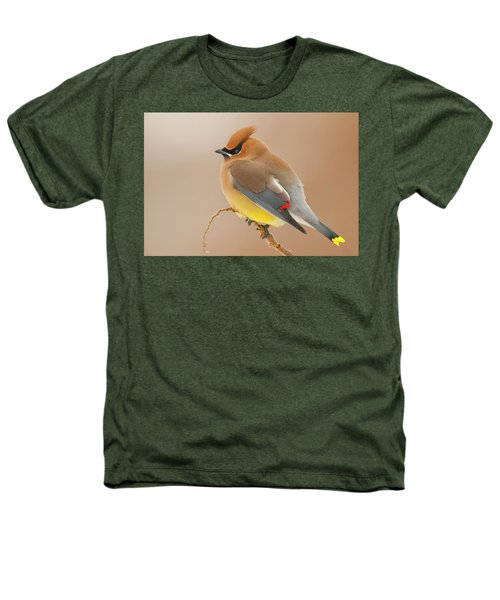 Cedar Wax Wing Heathers T-Shirt by Carl Shaw