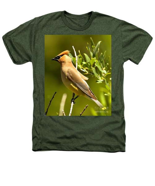 Cedar Waxwing Closeup Heathers T-Shirt by Adam Jewell