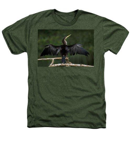 Anhinga Anhinga Anhinga Perching Heathers T-Shirt by Panoramic Images