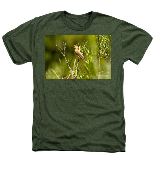 Cedar Waxwing At Glacier Heathers T-Shirt by Adam Jewell