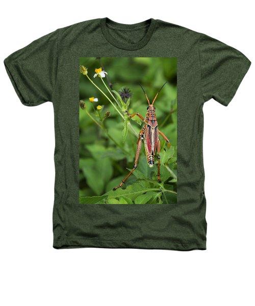 Eastern Lubber Grasshopper  Heathers T-Shirt by Saija  Lehtonen
