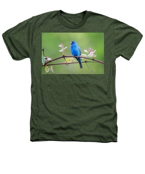 Indigo Bunting Perched Heathers T-Shirt by Bill Wakeley