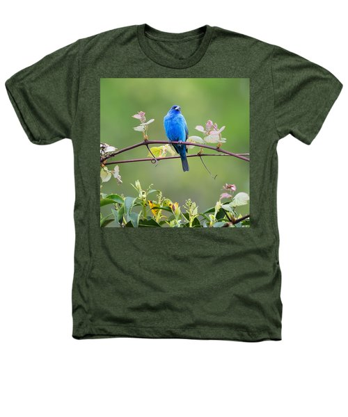 Indigo Bunting Perched Square Heathers T-Shirt by Bill Wakeley