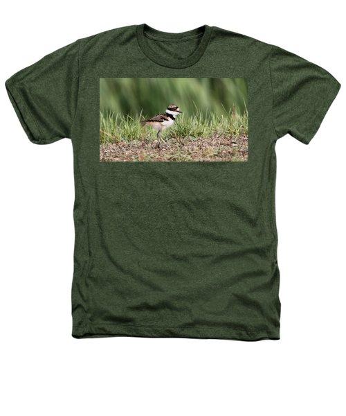 Killdeer - 24 Hours Old Heathers T-Shirt by Travis Truelove