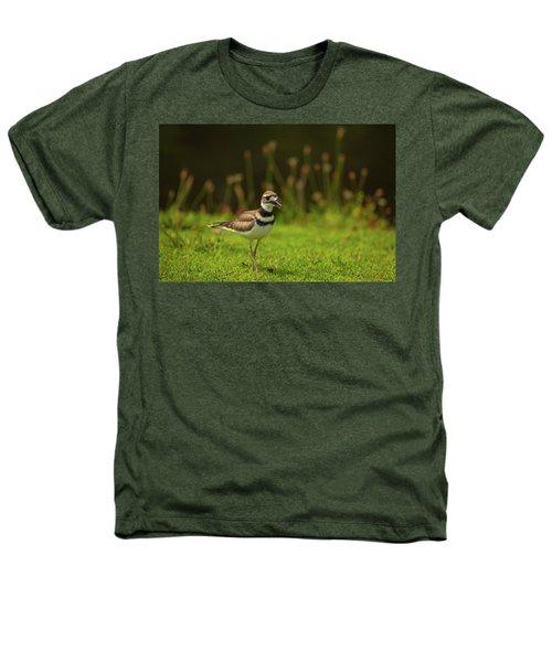 Killdeer Heathers T-Shirt by Karol Livote