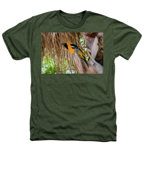 Male Hooded Oriole H17 Heathers T-Shirt by Mark Myhaver
