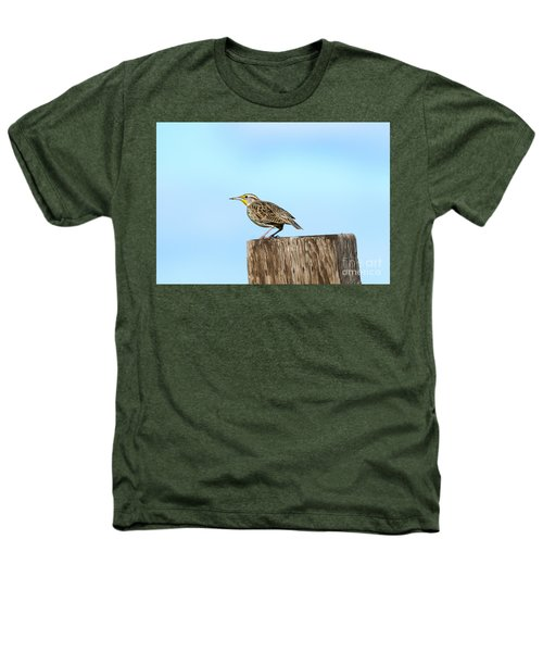 Meadowlark Roost Heathers T-Shirt by Mike Dawson
