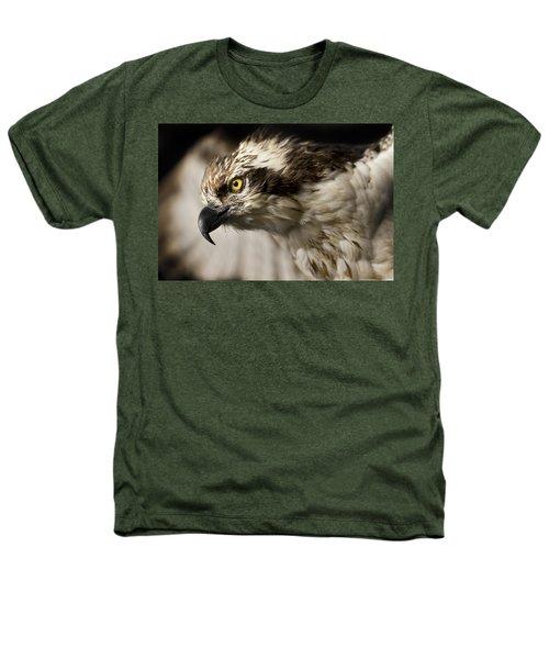 Osprey Heathers T-Shirt by Adam Romanowicz
