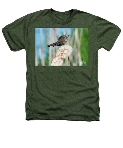 Ruffled Feathers Heathers T-Shirt by Mike Dawson
