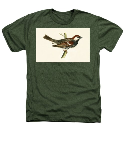 Spanish Sparrow Heathers T-Shirt by English School