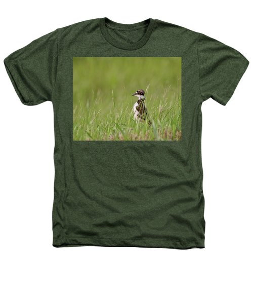 Young Killdeer In Grass Heathers T-Shirt by Mark Duffy
