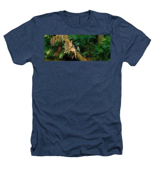 Anhinga Anhinga Anhinga On A Tree Heathers T-Shirt by Panoramic Images