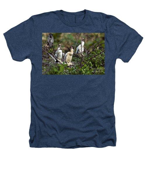 Baby Anhinga Heathers T-Shirt by Mark Newman