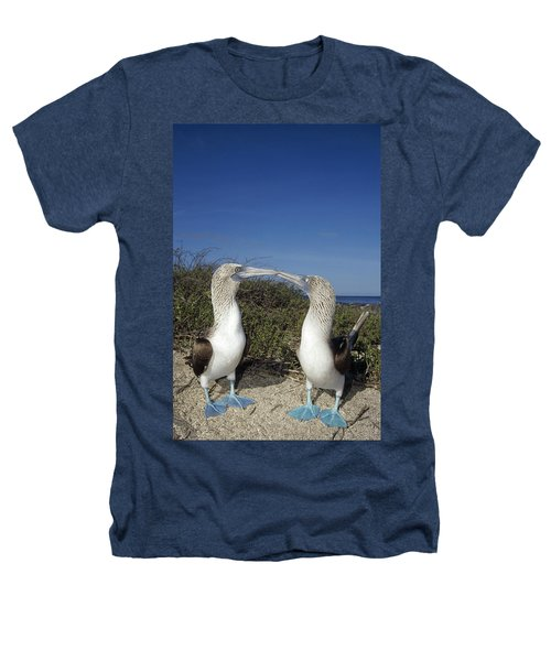 Blue-footed Boobies Courting Galapagos Heathers T-Shirt by Tui De Roy