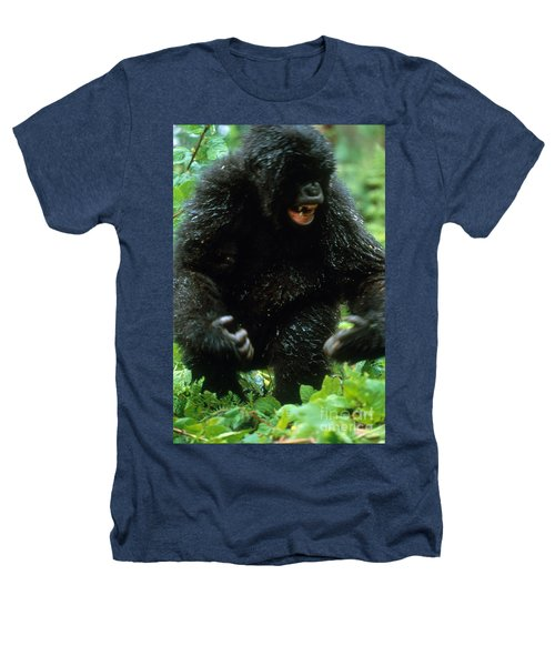 Angry Mountain Gorilla Heathers T-Shirt by Art Wolfe