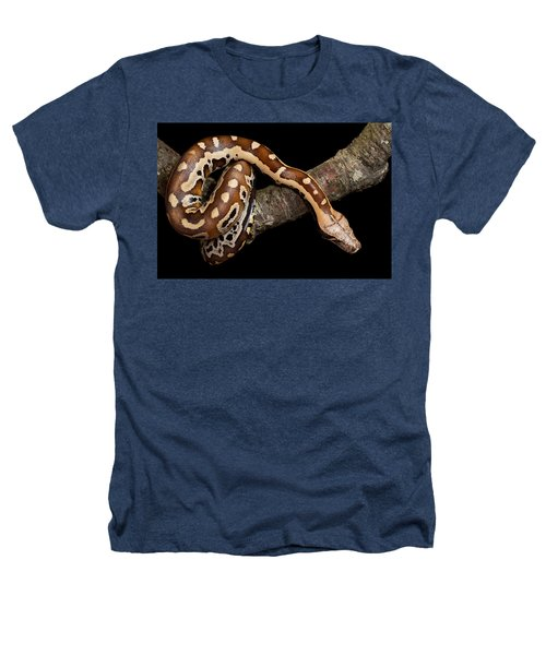 Blood Python Python Brongersmai Heathers T-Shirt by David Kenny