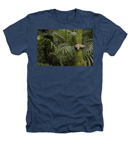 Boa Constrictor In The Rainforest Heathers T-Shirt by Pete Oxford
