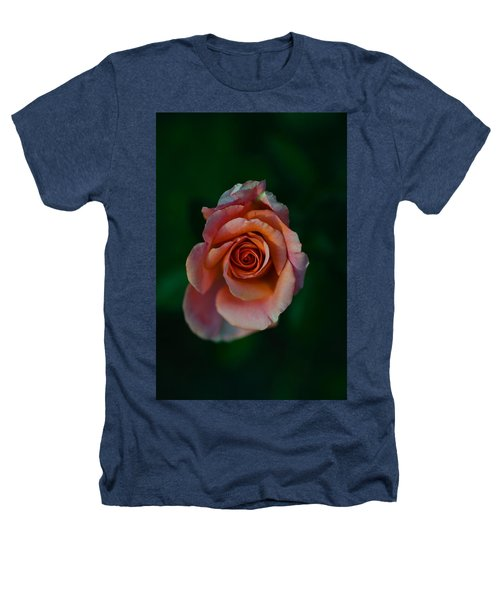 Close-up Of A Pink Rose, Beverly Hills Heathers T-Shirt by Panoramic Images