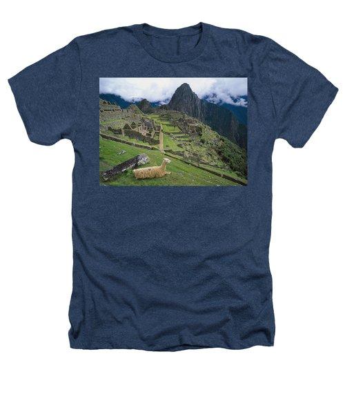Llama At Machu Picchus Ancient Ruins Heathers T-Shirt by Chris Caldicott
