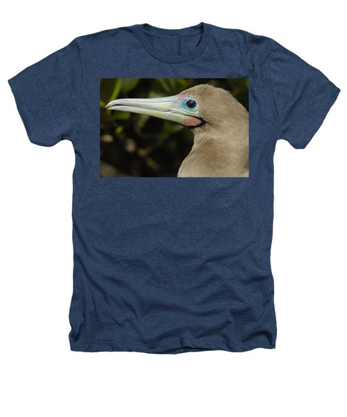 Red-footed Booby Close Up Galapagos Heathers T-Shirt by Pete Oxford