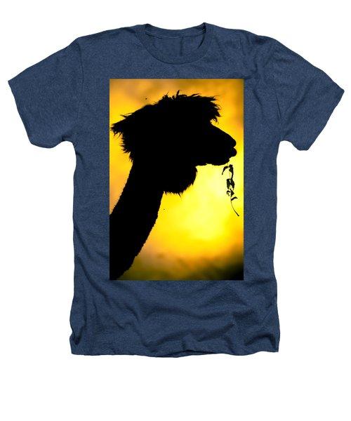 Endless Alpaca Heathers T-Shirt by TC Morgan