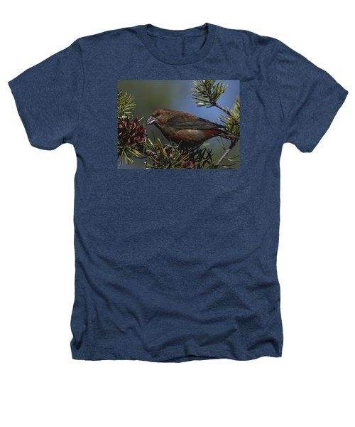 Red Crossbill Feeds On Pine Cone Seeds Heathers T-Shirt by Mark Wallner