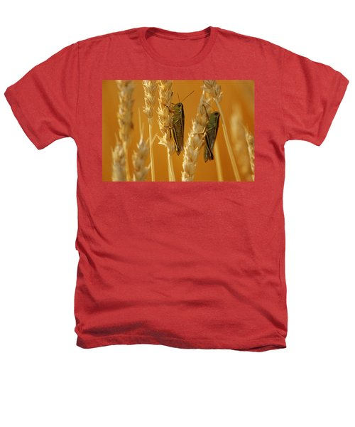 Grasshoppers On Wheat, Treherne Heathers T-Shirt by Mike Grandmailson